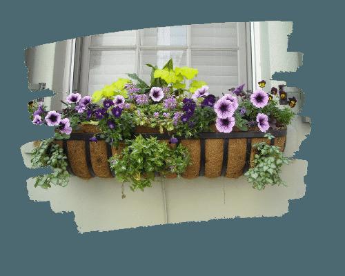 ideas-para-jardin-terraza-plantas-flores