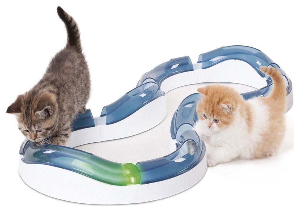 juego-gatos-pelota-luz