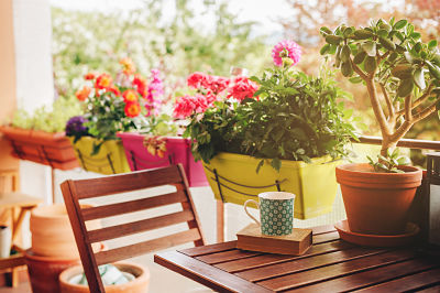 Ideas-balcon-pequeño-plantas