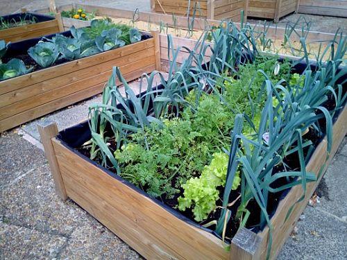 mesa-cultivo-huerto-urbano