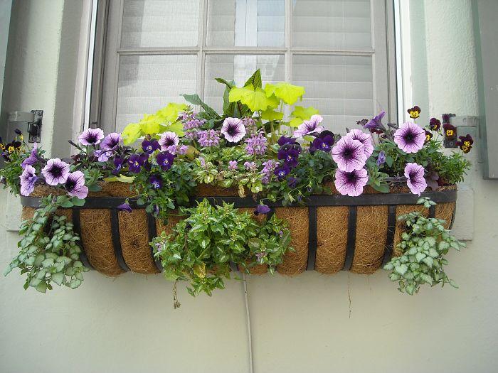 balcón-flores-plantas-barandilla