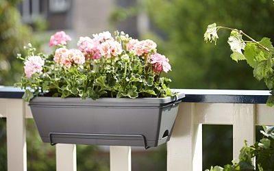 -planta-jardin-jardinera-balcon-enganche
